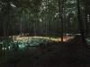 nachtaktives-blumenmeer-bruce-monro-field-of-light-05