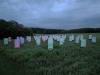 nachtaktives-blumenmeer-bruce-monro-field-of-light-11