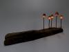 pilz-licht-great-mushrooming_yukio-takano_3