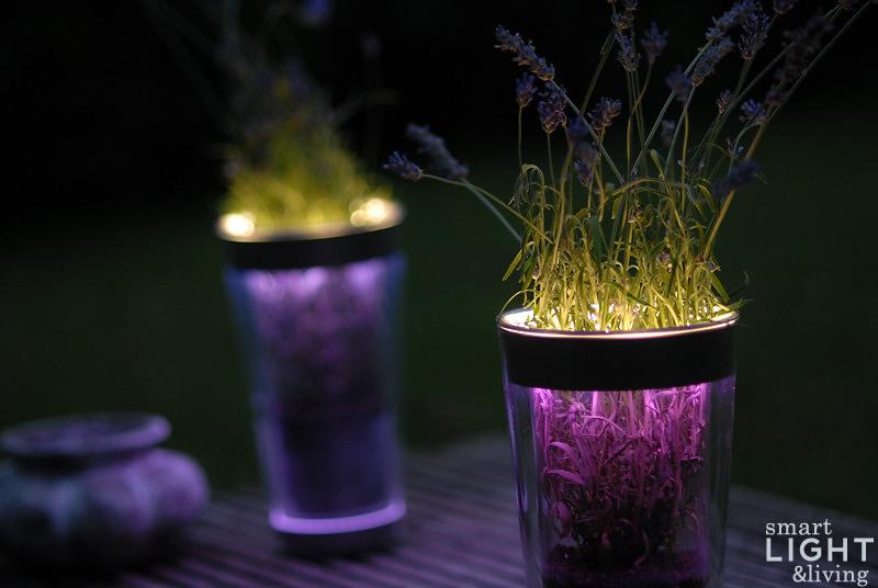 sommerlich t l ssig lila lavendel mit licht smart light living. Black Bedroom Furniture Sets. Home Design Ideas