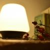 Herbstlich(t): Ecomoods – Dezente Tischbeleuchtung im Echtholz-Design
