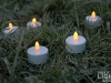 philips_tealight_led-teelichter_1403