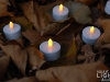 philips_tealight_led-teelichter_1407