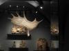 rijksmuseum-led-philips_4