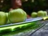 Serie-Sommerlich(t): Apfel auf LED-Licht-Teller