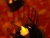 TeaLight LED-Teelicht Impressionen Advent 8549