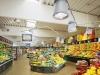 total-green-store_shop-beleuchtung-2