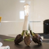 Licht à la carte – mit Artischocke oder Pasta: Fantasia